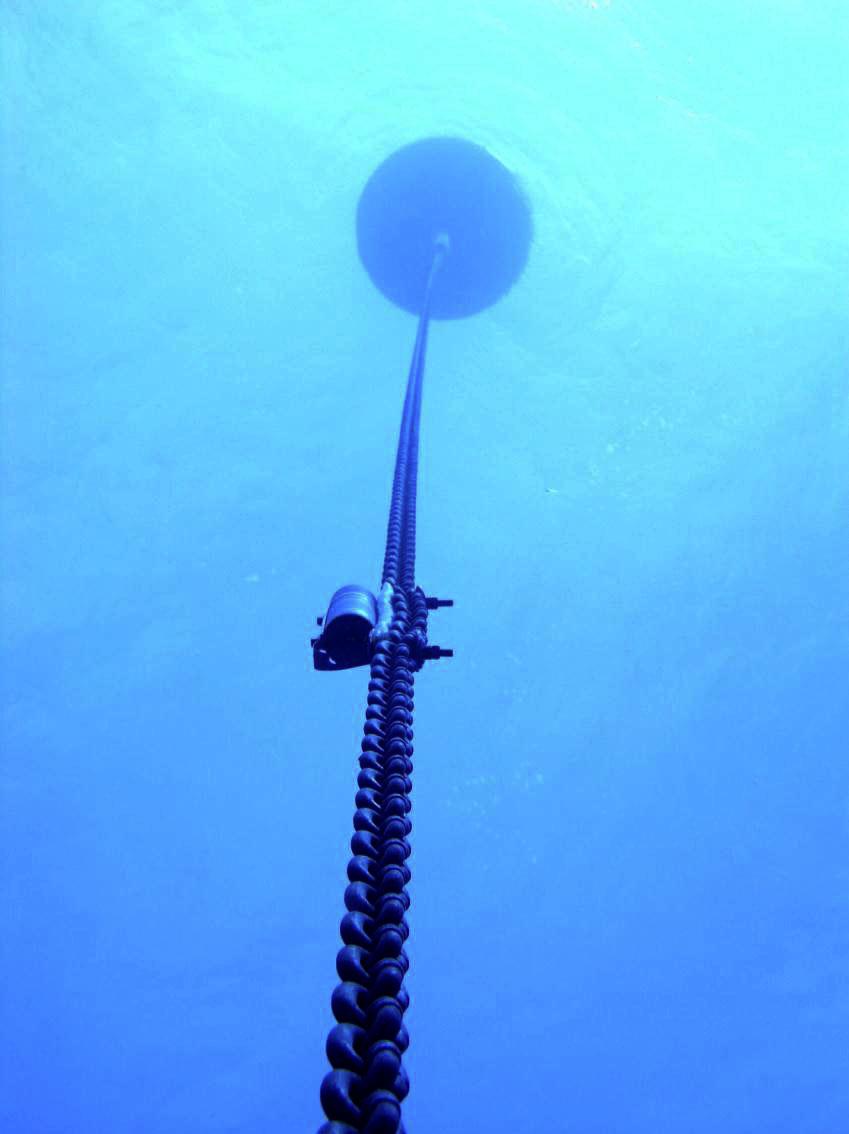 buoy chain Submechanophobia
